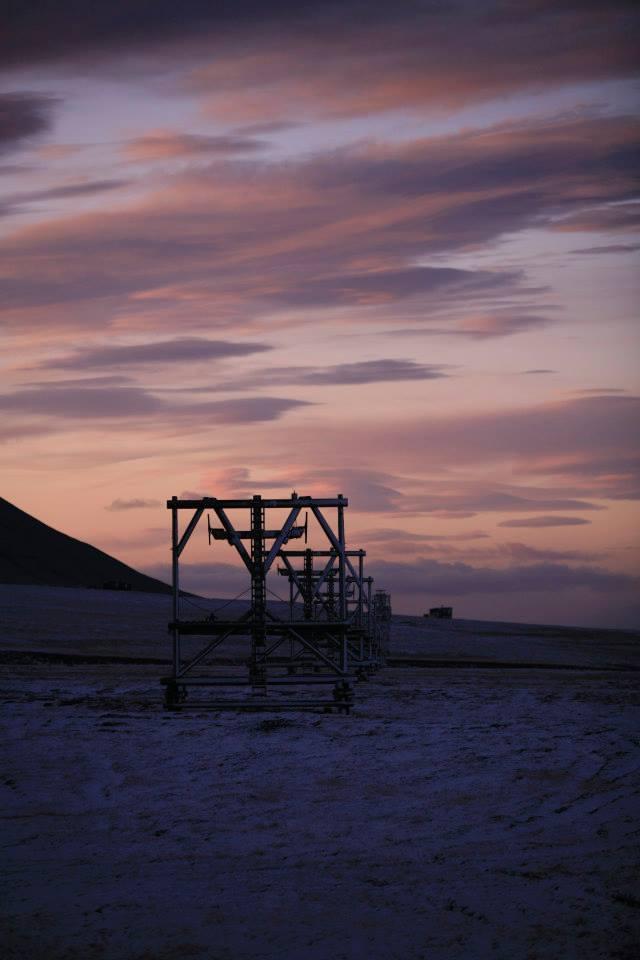 Taubanebukk, Svalbard