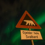 Northern lights Svalbard, Polarbear sign