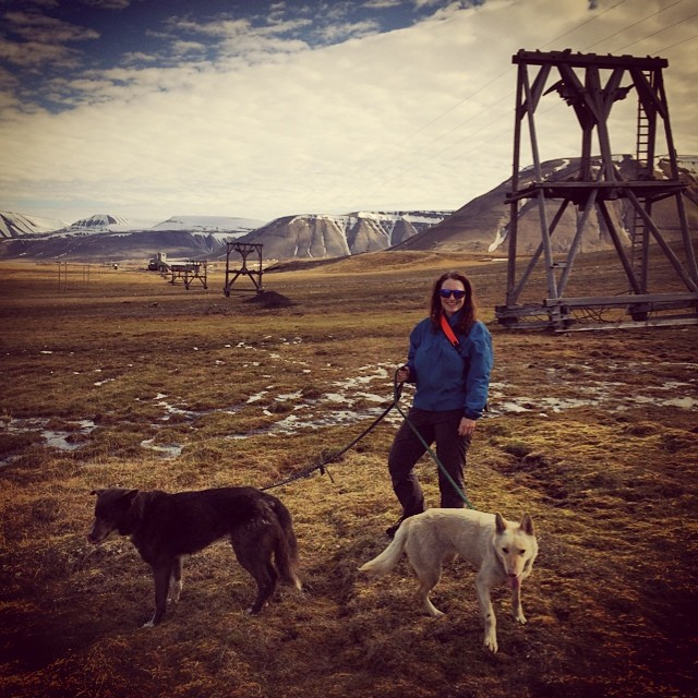 Hiking trip with dogs, Svalbard