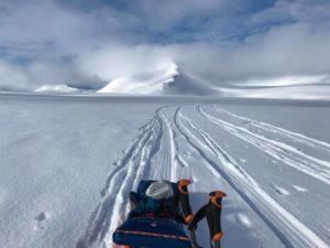 Leaving only tracks. Svalbard.