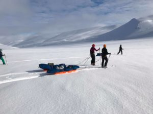 Through the snow. Svalbard.